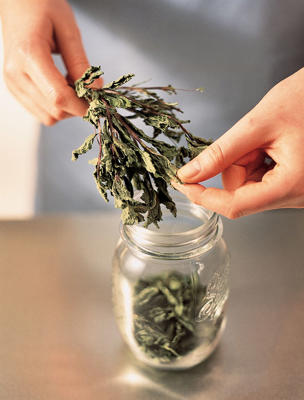 Photo: Drying herbs - Some herbs can be dried at home and their leaves stripped and kept in an airtight jar.