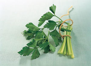 Photo: Flat-leaf parsley