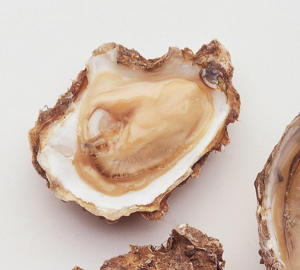 Photo: Oysters - Shellfish such as oysters are a useful source of selenium and various other nutrients, including vitamins niacin (B3), B12, and the minerals potassium and zinc.