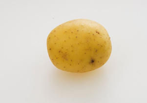 Photo: Vales Emerald - A cross between Maris Piper and Charlotte, it is a flavorful, small, round potato. Serve it scrubbed and boiled with plenty of butter, or chopped in salads.
