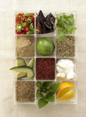 Photo: Signature ingredients - Top row (left to right): fresh chiles, dried chiles, cilantro; second row: coriander, lime, oregano; third row: avocado, annatto seeds, garlic; bottom row: cumin, bay leaves, orange.