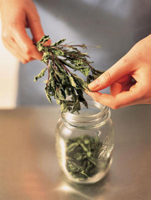 Photo: Dry freshly cut herbs by spacing them out on muslin and leaving them in a cool, dry room until the leaves feel brittle. Crumble large leaves or strip smaller leaves whole from their stems. Store in airtight containers.