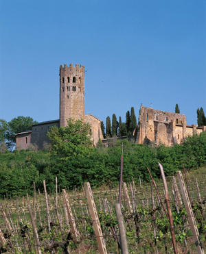 Photo: Picturesque monastery and vineyards, Orvieto