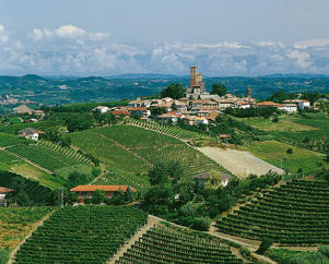 Photo: Vineyards and medieval castle in Barolo, Piemonte