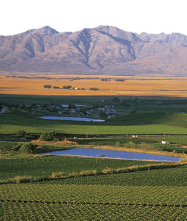 "Photo: View of Swartland District, the ""Blackland"""