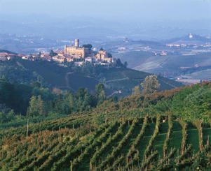 Photo: Hilltop village of Castiglione Falletto in Barolo, the Langhe