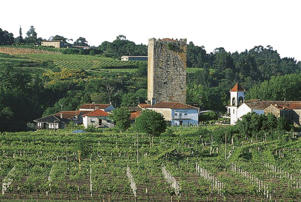 Photo: Vineyards and the village of Lapela in Vinho Verde