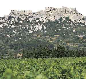 Photo: Vineyards and citadel in Les Baux de Provence