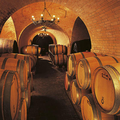 Photo: Cellar at Weingut Wieninger on the outskirts of Vienna