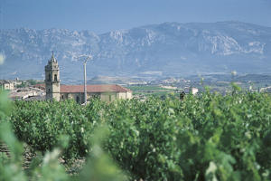 Photo: Vineyards and church in La Rioja