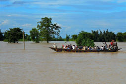 Flood affected villagers moving to safe side after flood in river Barhmaputra at Lawkhowa village in Nagaon district of Assam.