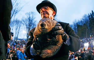 Groundhog Day in pictures