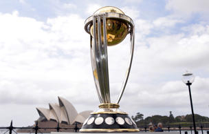 With Cricket World Cup 2015 approaching, we take a look at the teams, their strengths and their chances of lifting the coveted trophy.