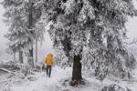 A man walks through the snowy landscape on the Grosser Feldberg mountain near Schmitten in the Taunus region, western Germany, on Jan. 20, 2015.