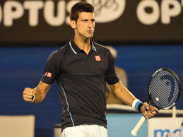 Djokovic powers past Verdasco