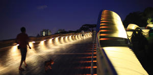 A man walks his dog on the Henderson Waves, Southeast Asia's longest and highest pedestrian bridge, at dusk in Singapore.