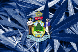 The coat of arms for the state of Maine on blue cannabis background.