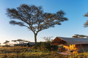 Luxury mobile tented camp, Serengeti National Park