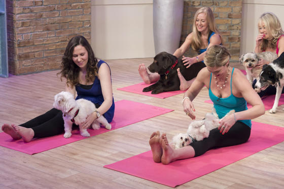 Mahny Djanhanguiri with Doggy Yoga Class