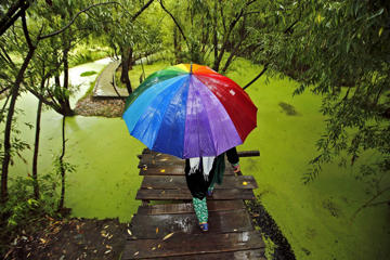 A woman walks on a footbridge as it rains in Srinagar, India, on June 24.