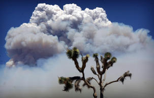 A huge forest fire that has been burning through rugged terrain in the San Bernardino Mountains for more than a week forced evacuations as it stretched northeast into the desert. (Kurt Miller/The Press-Enterprise via AP) MAGS OUT; MANDATORY CREDIT; LOS ANGELES TIMES OUT