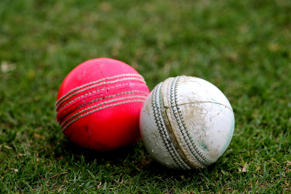 A view of the new day/night pink ball and the traditional white ball during day three of the Champion County match between Marylebone Cricket Club and Durham at Sheikh Zayed stadium on March 25, 2014 in Abu Dhabi, United Arab Emirates.