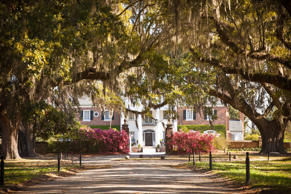 Boone Hall Plantation, Mt. Pleasant, S.C in Sept. 2012.