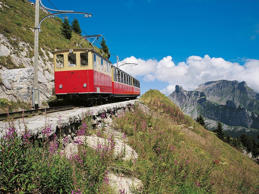 This nostalgic journey along a Swiss cog railway is a great way to take in Switzerland's best bits. The seven-kilometre route is one which has been traversed for 120 years, and en route to the high altitude Schynige Platte, you'll be treated to unbeatable views of the Eiger, Mönch and Jungfrau. At the top, take a romantic stroll through the crisp mountain air, or hike to the ridge for amazing views over Lake Brienz.