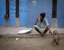 File: A man with a performing monkey brushes his teeth outside a public toilet on a beach along the Arabian Sea in Mumbai November 5, 2012.