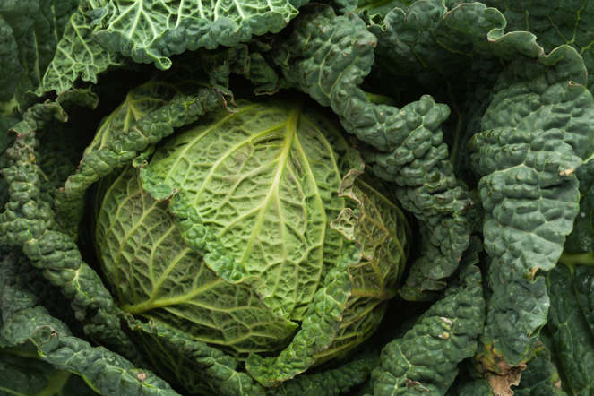 Loaded with vitamins and minerals, cabbage contains indole-3-carbinol, which reduces levels of the female hormone oestrogen, making testosterone more effective.