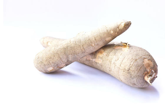 Slide 9 de 18: Cassava is eaten widely in Africa and South America – but must be very thoroughly cooked before being eaten. Chew it raw, and an enzyme in the tuber converts into cyanide.