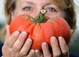 This big tomato won an award at the Harrogate Autumn Flower Show in London in 20...