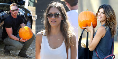 Stars visit Mr Bones Pumpkin Patch in Los Angeles to get their pumpkins in time for Halloween.