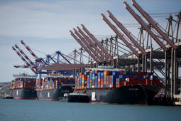 Container ships sit in berths at the Port of Los Angeles, California October 15, 2014. A shortage of transportation equipment and possible labor disruptions at the Los Angeles/Long Beach port complex, the nation's busiest, is delaying shipping containers for up to three weeks, threatening timely delivery to retailers for the holiday season.