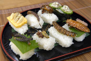 To celebrate Japan's traditional Sushi Day on November 1, here is a couple who like to make sushi that's far from ordinary: it's with creepy crawlies. Shiochi Uchiyama and his wife Chisato love their unusual cuisine so much that in 2008 Shiochi published a book, Fun Insect Cooking'.
