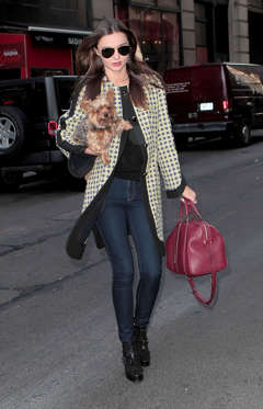 Australian Victoria Secrets model Miranda Kerr goes out and about with her Yorkshire terrier Frankie.