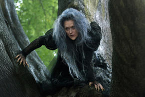 "Meryl Streep ventures ""Into the Woods"" as the Witch who wishes to reverse a curse so that her beauty may be restored. The humorous and heartfelt musical, a modern twist on the beloved Brothers Grimm fairy tales, explores the consequences of the quests of Cinderella, Little Red Riding Hood, Jack and the Beanstalk and Rapunzel—all tied together by an original story involving a baker and his wife, and the witch who cast a spell on them. In theaters Dec. 25, 2014. ©2013 Disney Enterprises, Inc. All Rights Reserved."