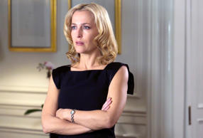 As Gillian Anderson reprises the role of the Detective Superintendent Stella Gibson in season 2 of the crime drama The Fall, we take a look at female detectives and cops who played central role in other popular crime drama on television.