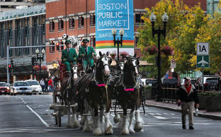 The world famous Budweiser Clydesdale Hitch makes its way down Congress Street in Boston, MA, Saturday, Oct. 11, 2014.