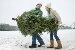 Couple carrying Christmas tree