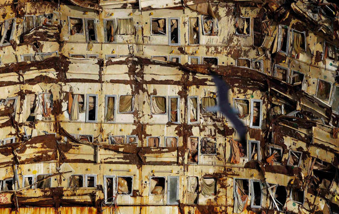 "A seagull flies past the side of the cruise liner Costa Concordia during the ""parbuckling"" operation outside Giglio harbour on January 12."