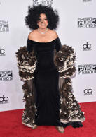 The legendary singer arrived in a black velvet gown with a feathered cape.