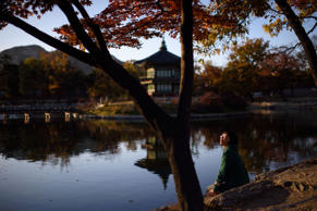A tourist sits beside a lake inside grounds of the Gyeongbokgung Palace in central Seoul.