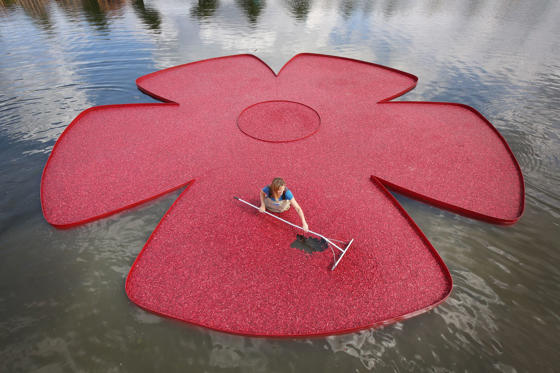 New England cranberry farmer Adrienne Mollor arranges a rose shaped floating display full of cranberries at the Hampton Court Palace Flower Show on July 7, in London, England.