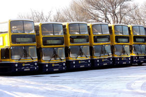 Dublin buses parked up at their Conyngham Road depot in Dublin