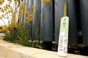 Australian batsman Phillip Hughes, 25, passed away on November 27th after succumbing to his injuries sustained during a domestic match, playing on 63 runs when he was hit by a bouncer. Tributes poured in from players and personalities from all walk of life as the news came in.