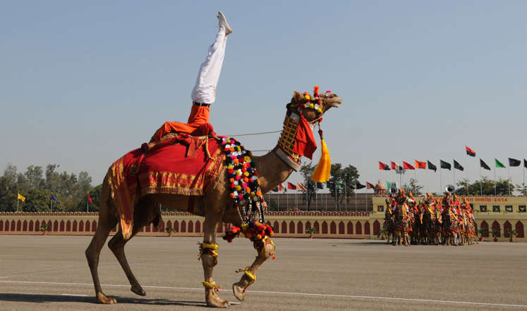 A BSF (Border Security Force) soldier perform acrobatics on camel back during the 49th Raising day of Indian defense outfit at Chawala Camp on December 1st, 2014 in New Delhi, India. The force was raised on December 1, in 1965.