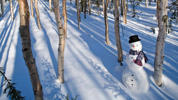 Snowman in birch forest