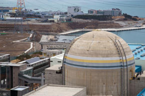 The No. 2 reactor building stands at Korea Hydro and Nuclear Power Shin Kori nuclear power plant in Ulsan, South Korea, Feb. 5, 2013.
