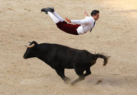 A Spanish recortador jumps over a bull during a show in Cali December 21, 2014.